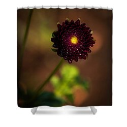 Shower Curtain featuring the photograph Yellow Center by Cherie Duran