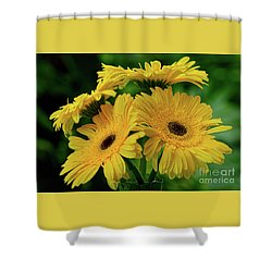 Shower Curtain featuring the photograph Yellow Chrysanthemums By Kaye Menner by Kaye Menner