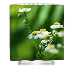 Yellow Composition  Shower Curtain