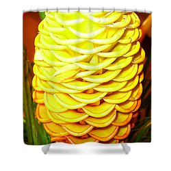 Shower Curtain featuring the photograph Yellow Cone Flower No. 1 by Merton Allen