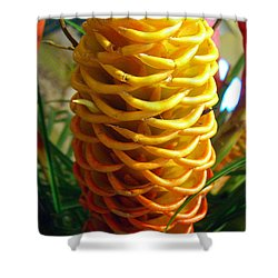 Shower Curtain featuring the photograph Yellow Cone Flower No. 2 by Merton Allen