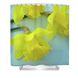 Yellow Daffodils Artwork Spring Flowers Art Prints Nature Floral Art Shower Curtain by Baslee Troutman