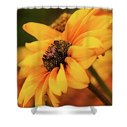 Shower Curtain featuring the photograph Yellow Dark by Mary Jo Allen