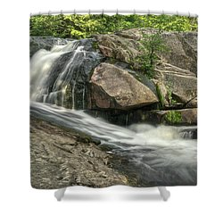 Yellow Dog Falls 4 Shower Curtain by Michael Peychich