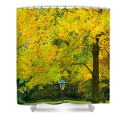 Yellow Drapes Shower Curtain