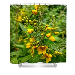 Yellow Dream  Shower Curtain