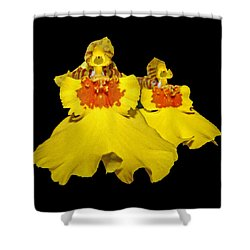 Shower Curtain featuring the photograph Yellow Dresses by Judy Vincent