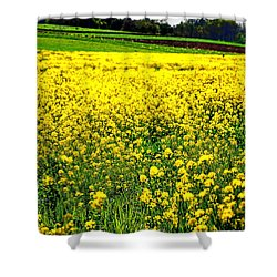 Yellow Field Shower Curtain by Bill Cannon