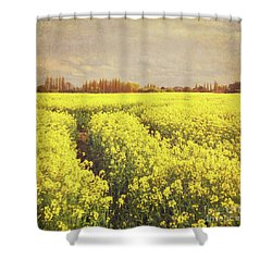 Yellow Field Shower Curtain by Lyn Randle