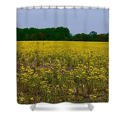 Yellow Field Shower Curtain by Tim Good