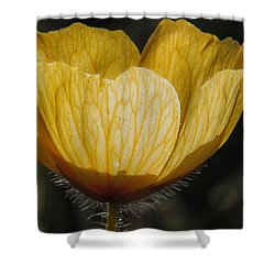 Yellow Flower 4 Shower Curtain