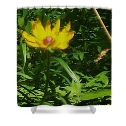 Yellow Flower Shower Curtain by Eric  Schiabor
