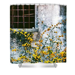 Shower Curtain featuring the photograph Yellow Flowers And Window by Silvia Ganora