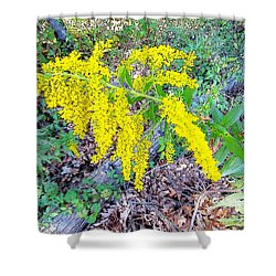 Yellow Flowers On Green Shower Curtain
