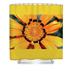 Shower Curtain featuring the photograph Yellow Gazania By Kaye Menner by Kaye Menner