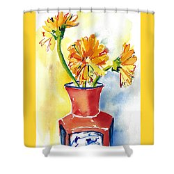 Yellow Gerbera Daisies In A Red And Blue Delft Vase Shower Curtain