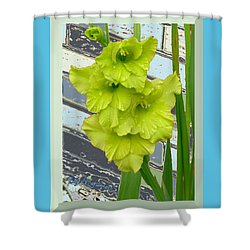 Yellow Gladiolas Shower Curtain