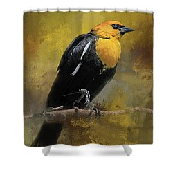 Shower Curtain featuring the photograph Yellow-headed Blackbird by Donna Kennedy
