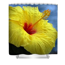Shower Curtain featuring the photograph Yellow Hibiscus by Debbie Karnes