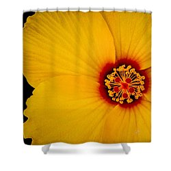 Yellow Hibiscus Squared Shower Curtain by TK Goforth