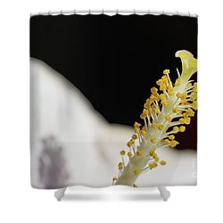 Yellow Hibiscus Stalk Shower Curtain