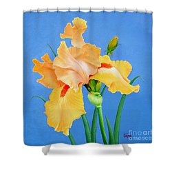 Shower Curtain featuring the painting Yellow Iris by Jimmie Bartlett