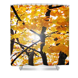 Yellow Light Shower Curtain by Patricia Arroyo