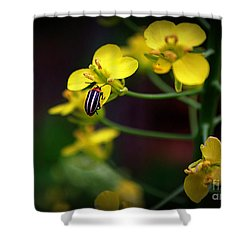 Shower Curtain featuring the photograph Yellow Lightning by Lisa L Silva