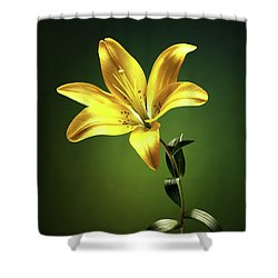 Yellow Lilly With Stem Shower Curtain