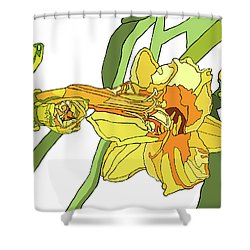 Yellow Lily And Bud, Graphic Shower Curtain