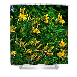 Shower Curtain featuring the photograph Yellow Lily Flowers by Susanne Van Hulst