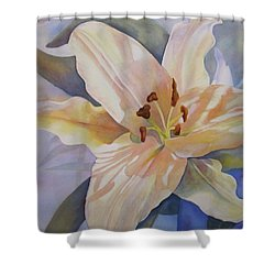 Shower Curtain featuring the painting Yellow Lily by Teresa Beyer