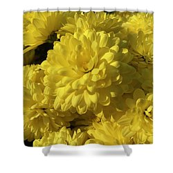 Yellow Mums Shower Curtain