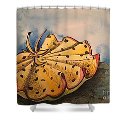 Yellow Nudibranch Shower Curtain