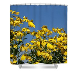 Yellow On Blue Shower Curtain by Lois Lepisto