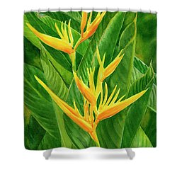 Yellow Orange Heliconia With Leaves Shower Curtain