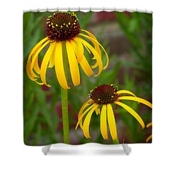 Shower Curtain featuring the photograph Yellow Pair by David Coblitz
