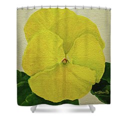 Yellow Pansy Shower Curtain by Wendy Shoults