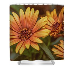 Yellow Petals #g3 Shower Curtain