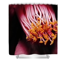 Yellow Pollen 01 Shower Curtain