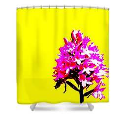Yellow Pyramid Orchid Shower Curtain by Richard Patmore