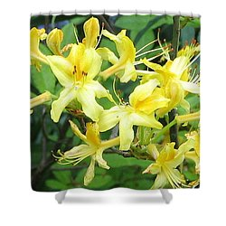Shower Curtain featuring the photograph Yellow Rhododendron by Carla Parris