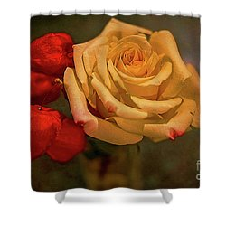 Shower Curtain featuring the photograph Yellow Rose And Chinese Lanterns by Diana Mary Sharpton
