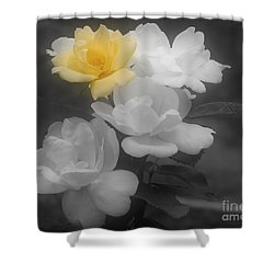 Yellow Rose Cluster Partial Color Shower Curtain by Smilin Eyes  Treasures