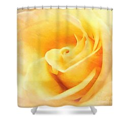 Shower Curtain featuring the photograph Yellow Rose - Sweet Whispers by Janine Riley