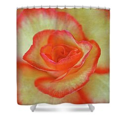 Yellow Rose With Red Tips Shower Curtain