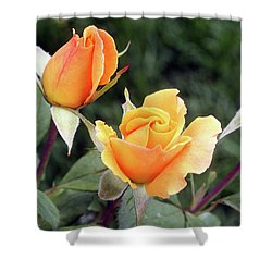 Yellow Rosebuds Shower Curtain