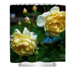 Yellow Roses Shower Curtain by Smilin Eyes  Treasures