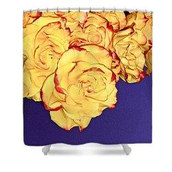 Yellow Roses Shower Curtain by Yelena Tylkina