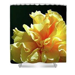 Yellow Ruffle Hibiscus Flower Shower Curtain